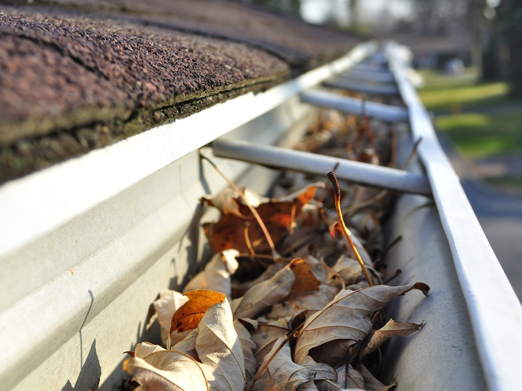 Gutters Clean Up